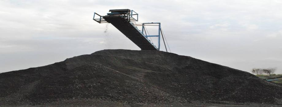 Products : Non Coking coal